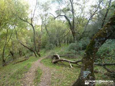 Atazar - Meandros Río Lozoya - Pontón de la Oliva - Senda del Genaro;ruta por toledo